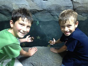Austin Aquarium, Boys w Starfish