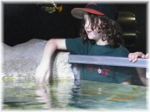 Austin Aquarium Bookout-Sharks