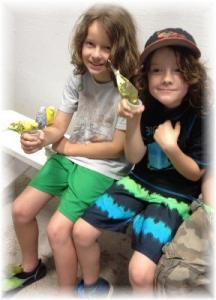 Austin Aquarium Bookouts Feeding Birds