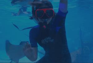 Austin Aquarium Annual Pass