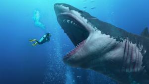 San Antonio Aquarium Shark Exhibit Encounter Feed the Sharks