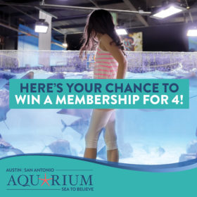 Austin Aquarium Is Giving Away Free Memberships Everyday Through Jan. 15
