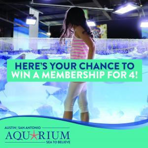 Austin Aquarium Memberships, Things To Do With Family In Austin, Things To Do Today