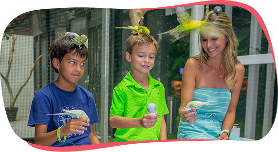 Austin Aquarium School Field Trips Summer Camps