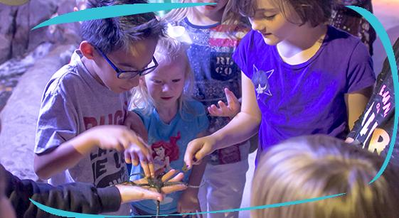 Austin Aquarium Educational Field Trips