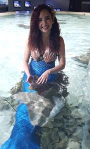 Austin Aquarium Mermaid Encounter