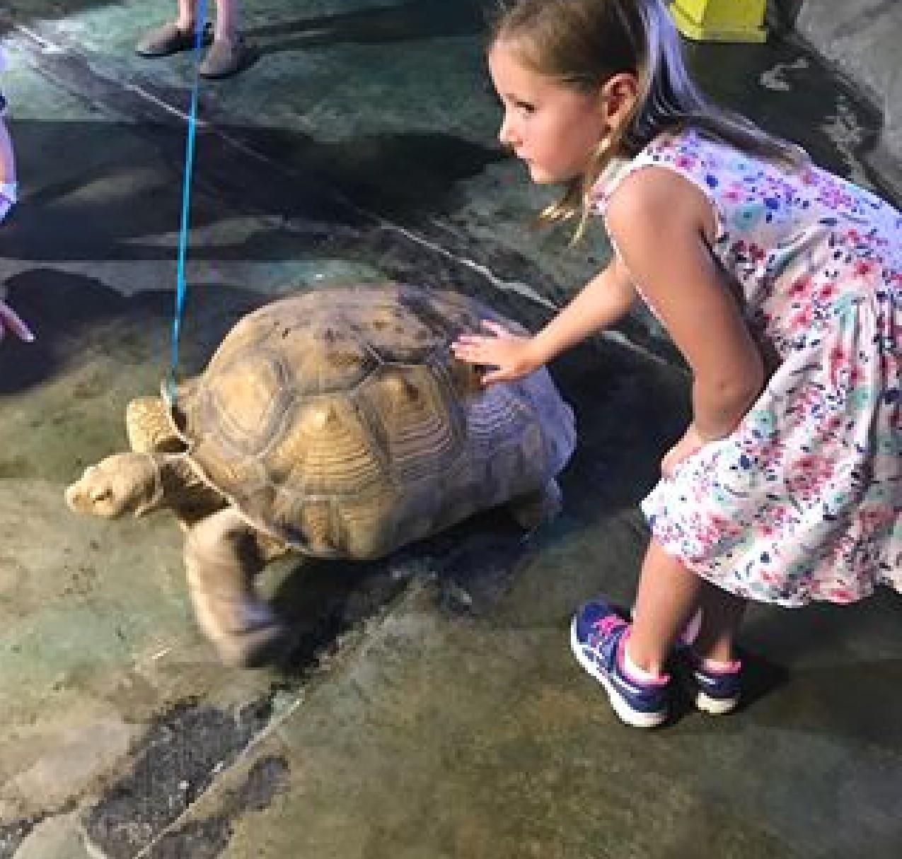 Animal Encounters At The Austin Aquarium Exciting